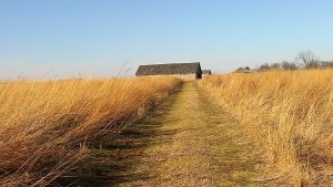 The State Park at Prophetstown is working to restore native habitats, including prairie, wetlands and open woodlands, to resemble the 19th century landscape that Native Americans would have experienced.