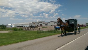 Horse-drawn buggies are a familiar sight in Elkhart and LaGrange counties where they travel on the shoulder alongside automobiles.