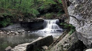 McCormick's Creek was Indiana's first state park, notable for its limestone canyon, flowing creek, and scenic waterfalls. Photo by Indiana Department of Natural Resources.